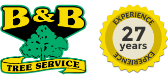 B&B Tree Service Logo in Glendora, NJ