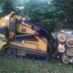 tree-service-massive-limbs-1