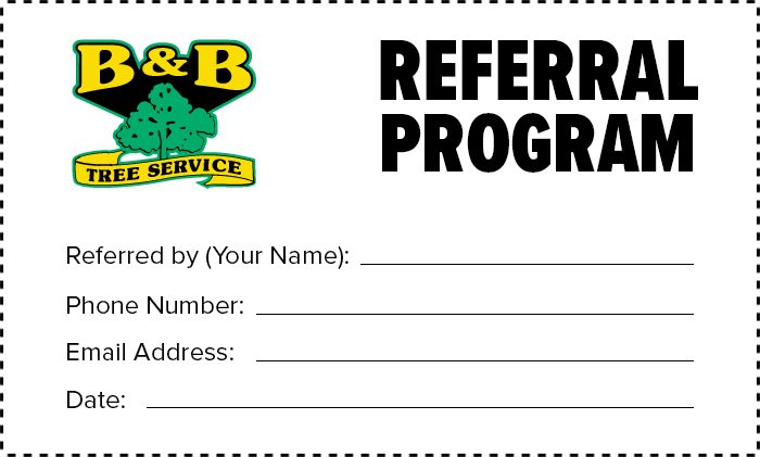bnb-tree-referral-program