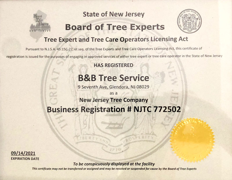 B&B Tree Service NJ Business License and Registration